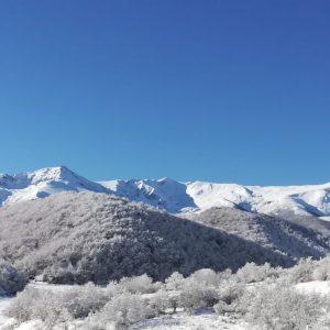 Paisa nevado Peñalabra