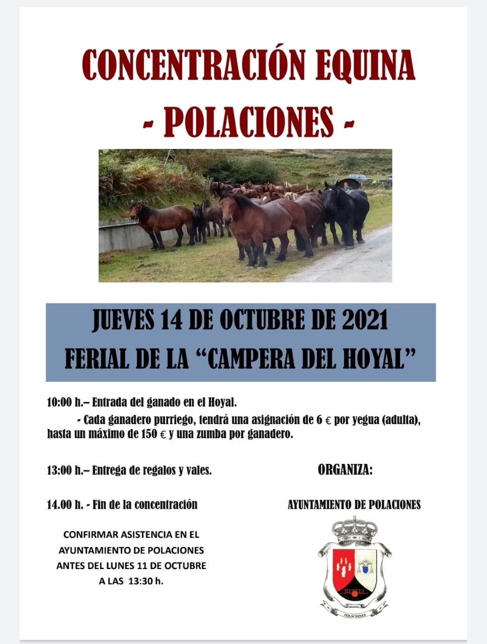 CONCENTRACIÓN EQUINA POLACIONES 14 DE OCTUBRE